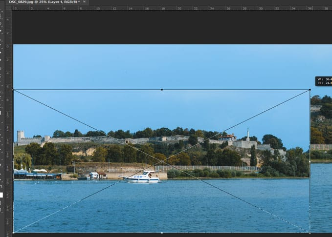free transform tool in photoshop