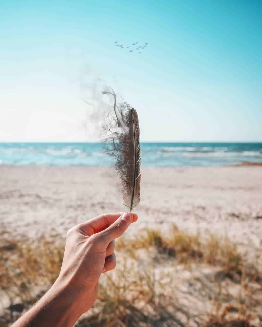bird feather vanishing photoshop edit