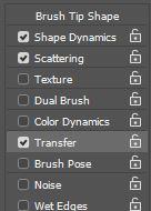 photoshop brush transfer setting
