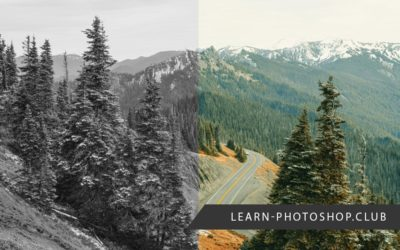 Stuck in Photoshop Grayscale? Here's What to Do