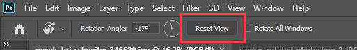 reset view button photoshop