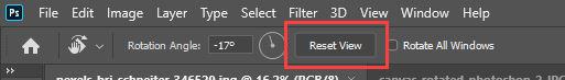 reset view button photoshop